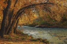 KathyS Clear-Creek-Fall-1AL1220