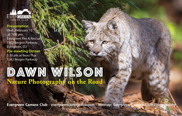 Dawn Wilson: Nature Photography on the Road