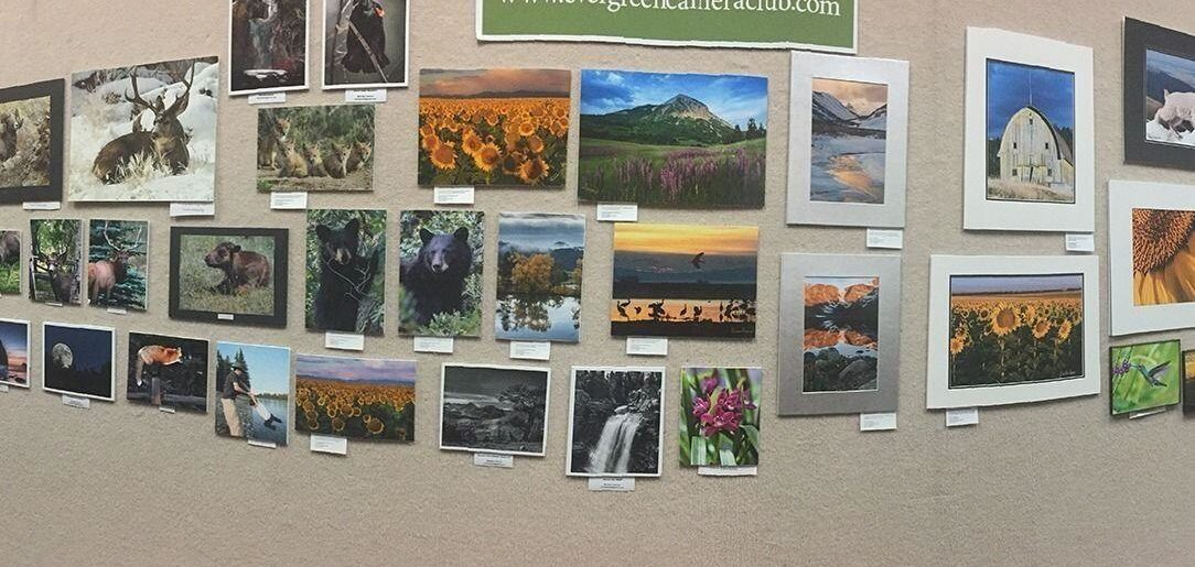 CANCELED: Display your photos at the Evergreen Library in November!