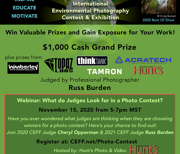 What Do Judges Look For in a Photo Contest?