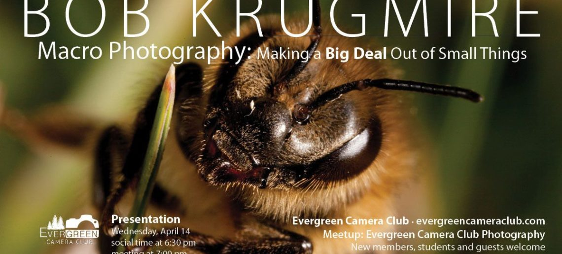 Macro Photography: Making a Big Deal Out of Small Things with BOB KRUGMIRE