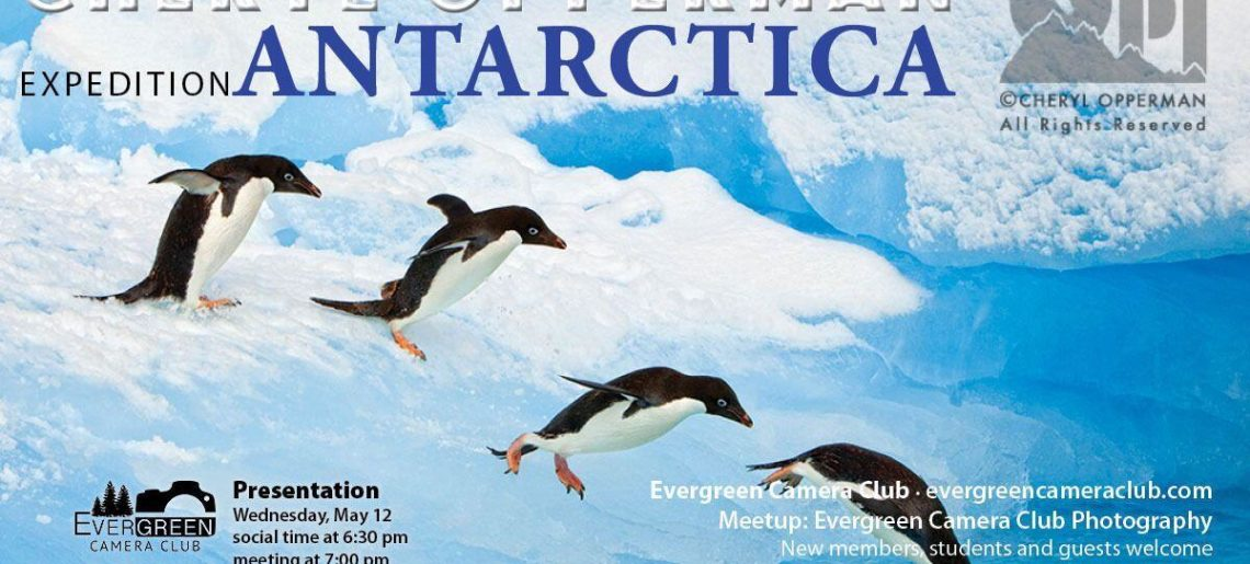 May 12th General Meeting: Expedition Antarctica with CHERYL OPPERMAN
