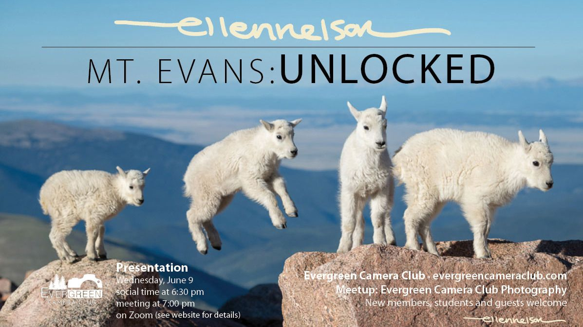 June 9th General Meeting: Mt. Evans Unlocked with Ellen Nelson